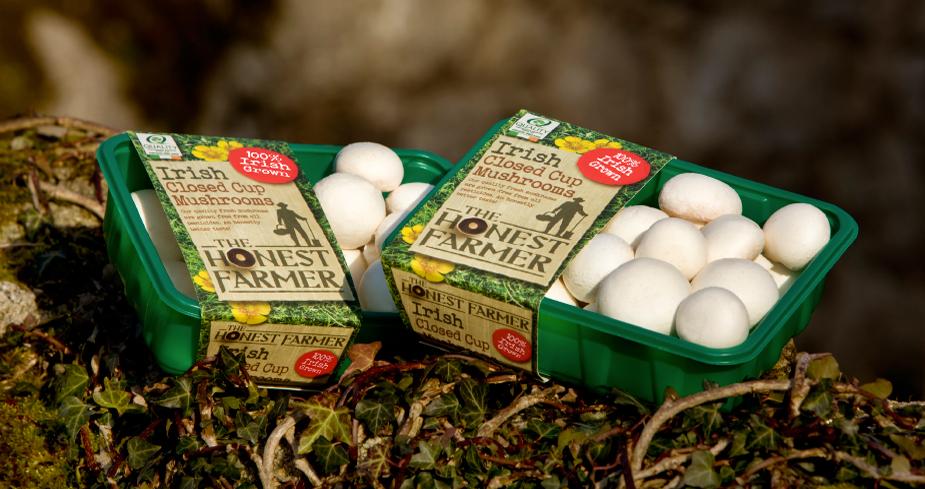 Codd Mushrooms